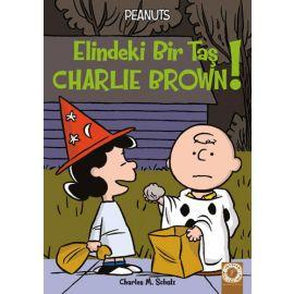 Peanuts - Elindeki Bir Taş Charlie Brown!