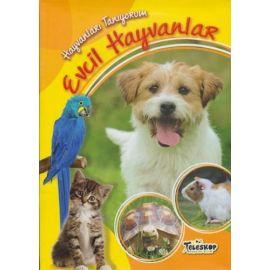 Hayvanları Tanıyorum - Evcil Hayvanlar