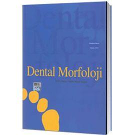 Dental Morfoloji