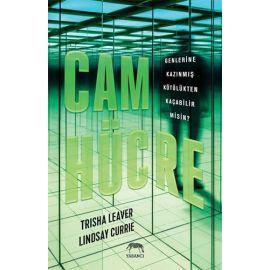 Cam Hücre (Ciltli)